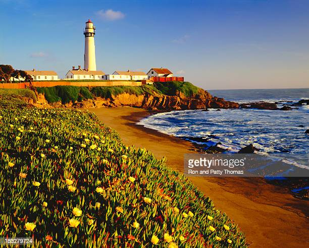 pigeon point lighthouse on california coastline - san mateo county stock pictures, royalty-free photos & images