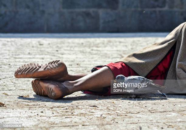 A pigeon seen eating corn next to a man resting in Srinagar Indian administered Kashmir Kashmir is the northernmost geographical region of the Indian...
