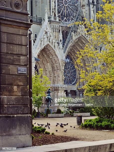 Pigeons Against Reims Cathedral