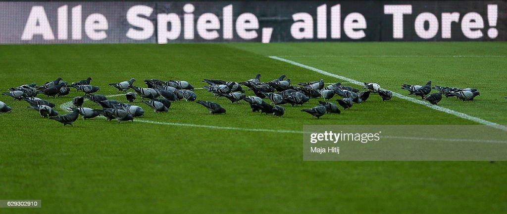 Bayern Muenchen v VfL Wolfsburg - Bundesliga : Nachrichtenfoto