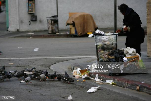 Pigeons feed on scraps of a pizza as a homeless person looks for food in a trash can along Wall Street where the homeless have waken up before dawn...