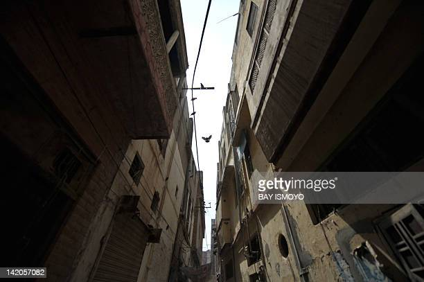 Pigeons fly above an alley lined with dilapidated buildings in the old town section of Multan on March 17 2012 Multan one of the oldest cities in the...