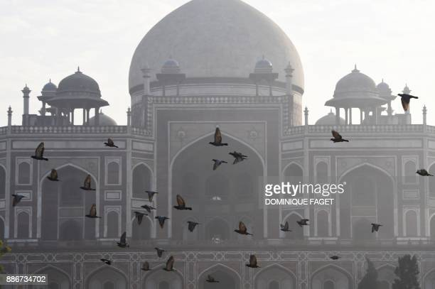 TOPSHOT Pigeons fly above Humayun's Tomb on a foggy morning in New Delhi on December 6 2017 FAGET