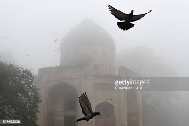 Pigeons fly above the Sabz Burj tomb part of the Humayun's Tomb complex on a foggy morning in New Delhi on November 30 2016 / AFP / DOMINIQUE FAGET