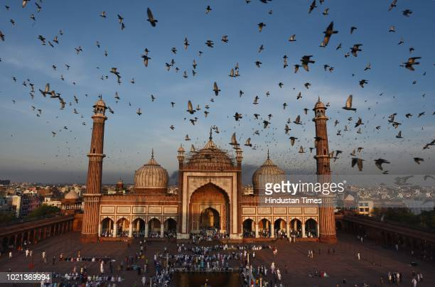 Pigeons fly around Jama Masjid as Muslims gather to offer 'Namaz' on the occasion of Eid alAdha on August 22 2018 in New Delhi India Eid alAdha marks...