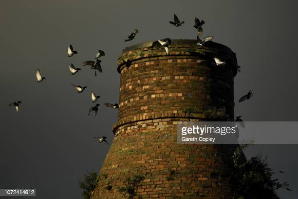 Pigeons fly around the remaining kiln of Price KensingtonTeapots Burslem on November 16 2017 in Stoke on Trent England At the height of the...