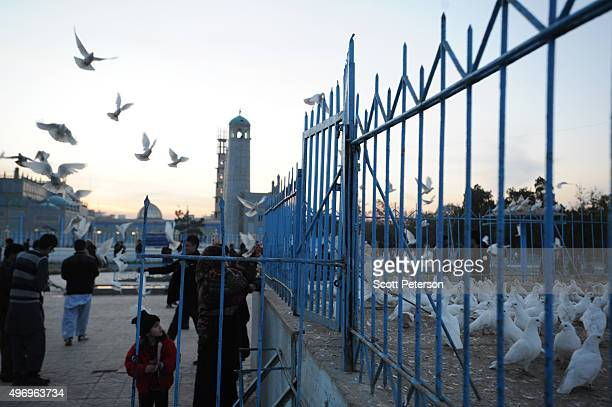 Pigeons fly beside the ancient Blue Mosque as Afghans go about daily life despite security fears of a resurgent Taliban across the country on...