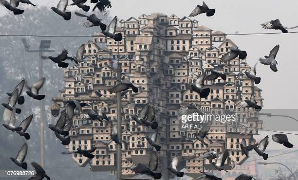 TOPSHOT Pigeons fly near a sculpture during a cold and foggy morning in Lahore on January 4 2019