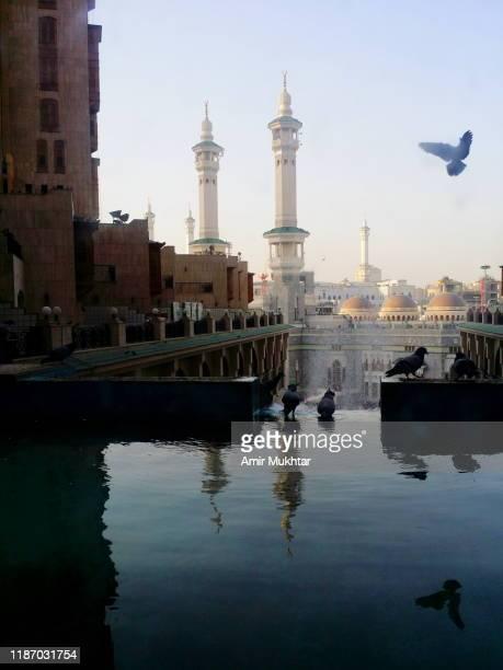 pigeons flying and water infront of the minarets of al haram mosque - la mecque photos et images de collection