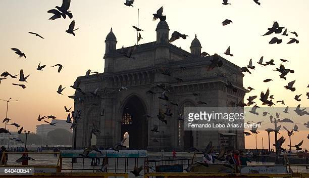 Pigeons Flying At Historic Gateway Of India Against Sky