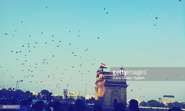 Pigeons Flying By Gateway Of India Against Sky