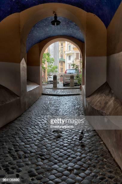pigeons in a pedestrian passageway in rome. - emreturanphoto - fotografias e filmes do acervo