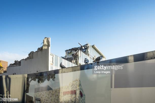 Pigeons perching on the hoardings around the site of the old Post Office building being demolished as part of the long awaited redevelopment of...