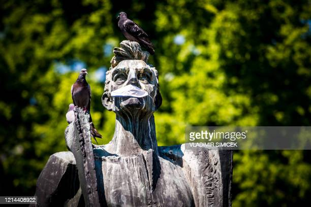 Pigeons sit on a statue of communist politician Marek Culen with a face protection mask in Bratislava on May 21 2020 amid the novel coronavirus...