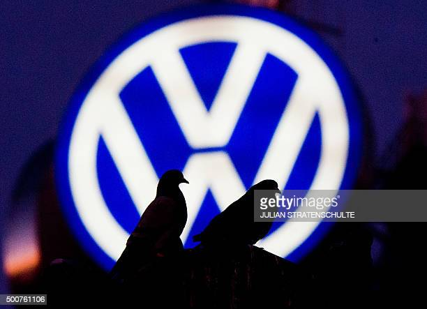 Pigeons sit on a street lantern in front of the illuminated logo of German car maker Volkswagen on December 10 2015 in Hanover central Germany...