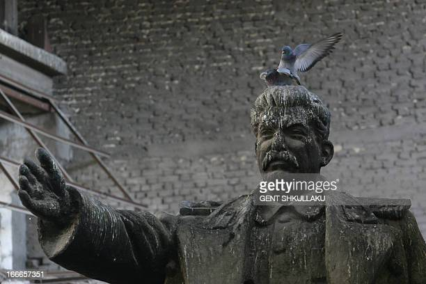 Pigeons stand on a statue of late Soviet dictator Josef Stalin in the storage of a foundry on April 15 2013 in Tirana The bronze of the communist era...