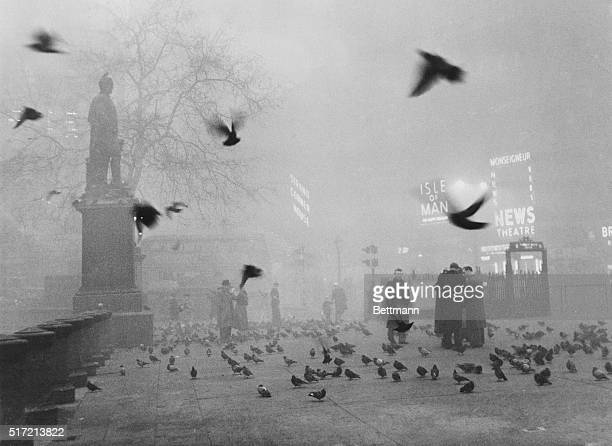 Pigeons swarm pedestrians as a thick fog shrouds Trafalgar Square and the rest of London