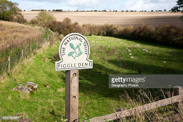Piggle Dene is a National Trust area of chalk dry valley with sarsen stones Lockeridge Wiltshire England UK