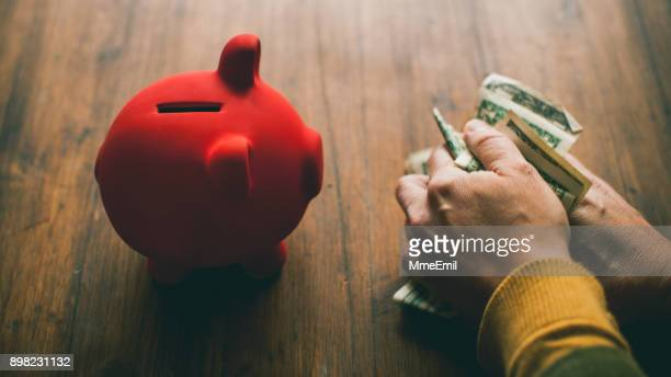 Piggy Bank and a woman hands holding US currency