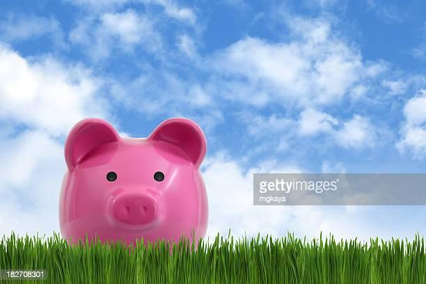 Sparschwein und Gras