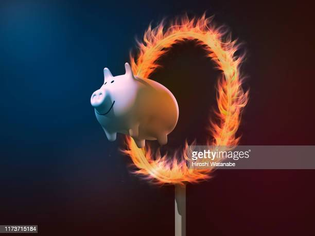 piggy bank diving through a ring of fire - special:random stock pictures, royalty-free photos & images