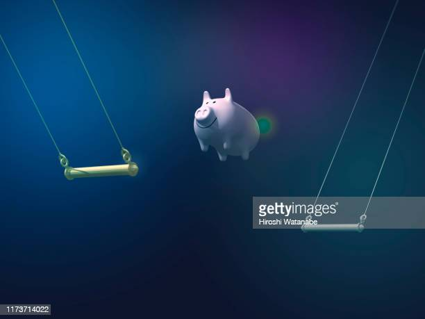 piggy bank doing aerial swing - animal behavior stock pictures, royalty-free photos & images