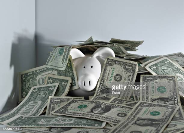 Piggy bank hiding among dollars bills.