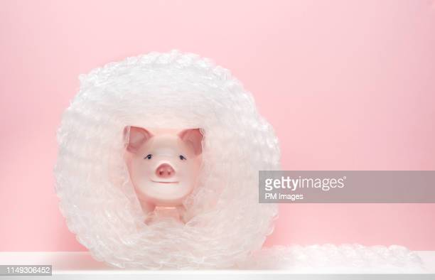 piggy bank in bubble wrap - safety stock pictures, royalty-free photos & images