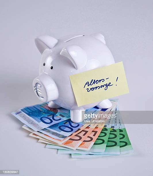 Piggy bank on bank notes, Altersvorsorge, pension plan written on a piece of paper