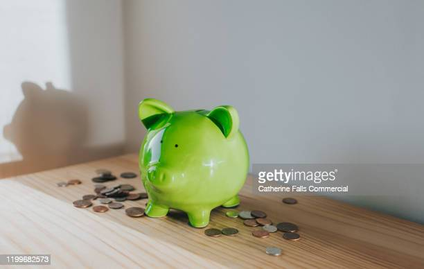 piggy bank - trust stock pictures, royalty-free photos & images