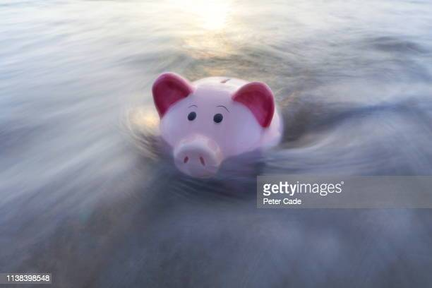 piggy bank sinking in water - recession stock pictures, royalty-free photos & images