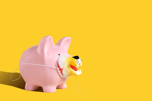 Piggy Bank Wearing a Disguise - gettyimageskorea