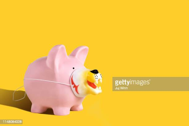 piggy bank wearing a disguise - pig nose stock pictures, royalty-free photos & images