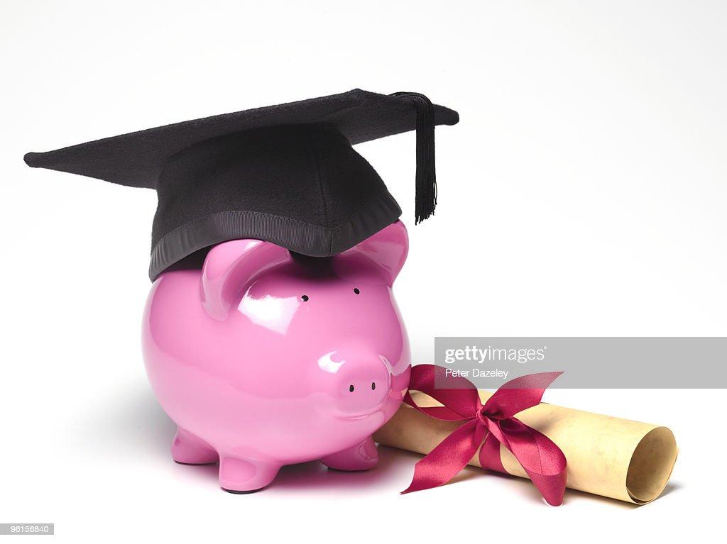 piggy bank wearing mortar board diploma stock photo getty  piggy bank wearing mortar board diploma stock photo
