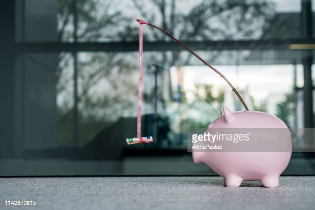 piggy bank with a money carrot stick - incentive stock pictures, royalty-free photos & images