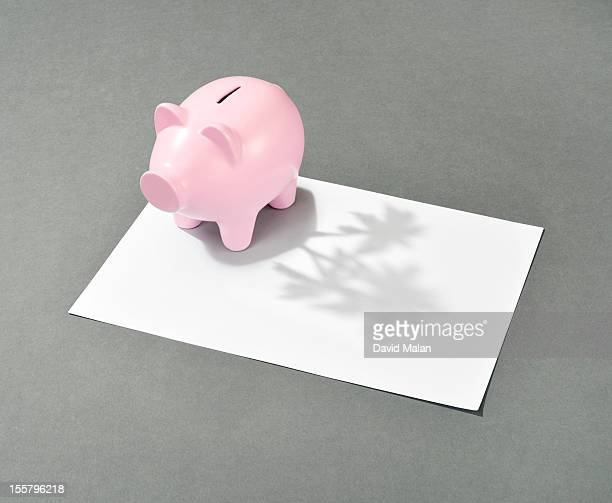 Piggy bank with an island shaped shadow