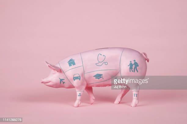Piggy Bank with Butcher's Diagram and Icons