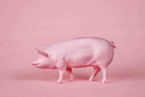 Piggy Bank with Butcher's Diagram - gettyimageskorea