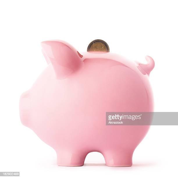 Sparschwein und Euro-Münze