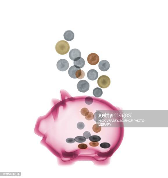 piggy bank with coins, x-ray - x ray image stock pictures, royalty-free photos & images