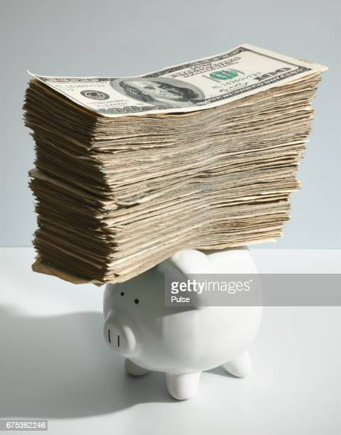 Piggy bank with stack of hundred dollars bills on top.