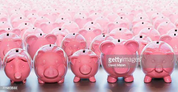piggy banks standing row by row - piggy bank stock photos and pictures
