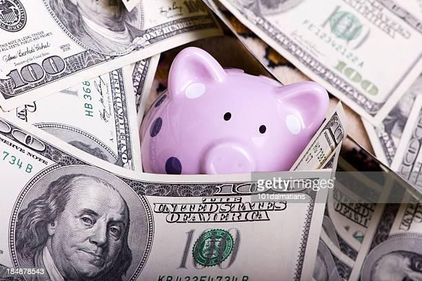 Piggy in debt