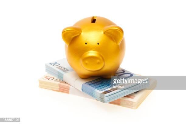 Piggybank on a Twenty and fifty euro wad of cash