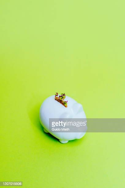 piggybank with green seedling. - guido mieth stock pictures, royalty-free photos & images