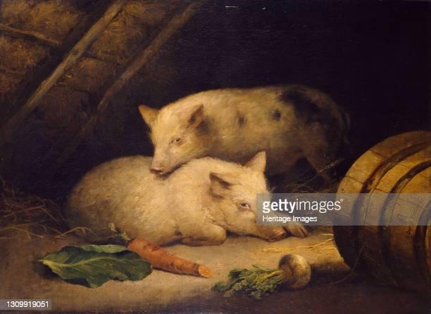 Pigs, late 18th century. Artist George Morland. .