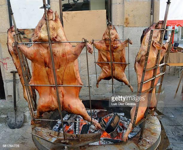 pigs roasted on a spit - carne assada imagens e fotografias de stock
