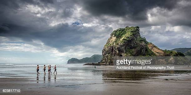 piha by ian rushton - auckland stock pictures, royalty-free photos & images