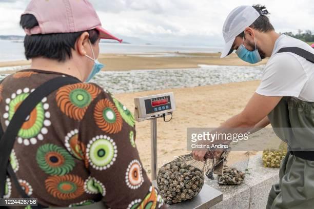 Pilar Laíño controls how shellfisherman Adrián González weighs the clams he has collectedon May 12, 2020 in A Pobra do Caramiñal, Spain.The...