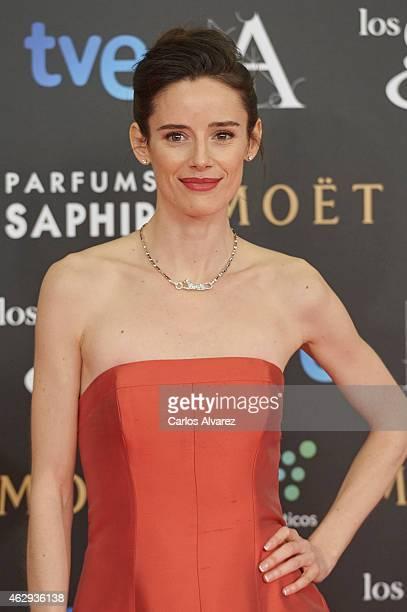 Pilar Lopez de Ayala attends Goya Cinema Awards 2014 at Centro de Congresos Principe Felipe on February 7 2015 in Madrid Spain